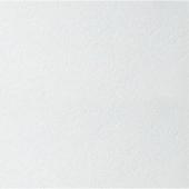 Потолочная плита Armstrong Plain tegular 600x600x15мм