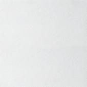 Потолочная плита 600*600*12 ARMSTRONG Retail